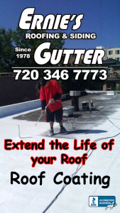 Reflective roof coating Denver